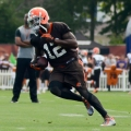 Josh Gordon 2016 Fantasy Football